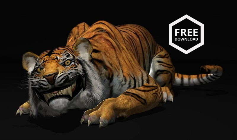 CG-Spectrum-Free-Tiger-Animation-Rig