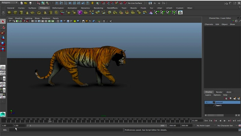 The-Tiger-Animation-Rig
