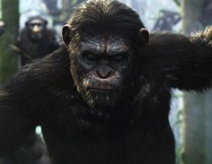 Nick-Fredin-Dawn-of-the-Planet-of-the-Apes-3D-Film-Animation